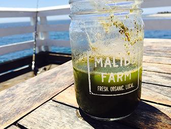 Malibu_Farm_337_248018_1-2